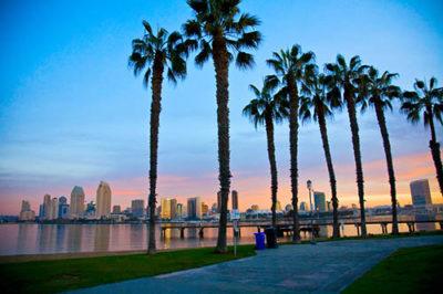 обучение в калифорнии
