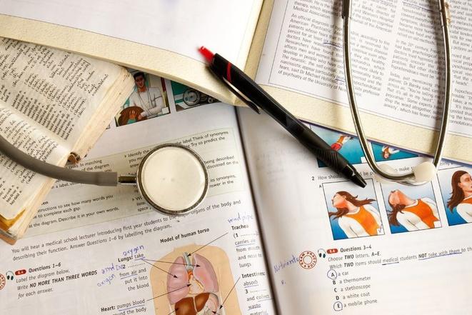 медицинское образование великобритания