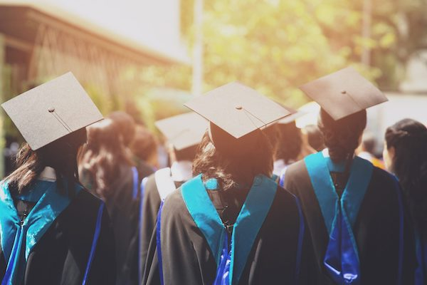 бесплатное образование в университете турции